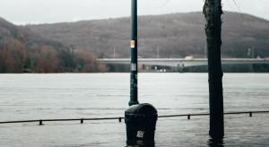 Holandia: Powodzie w wielu miejscach kraju