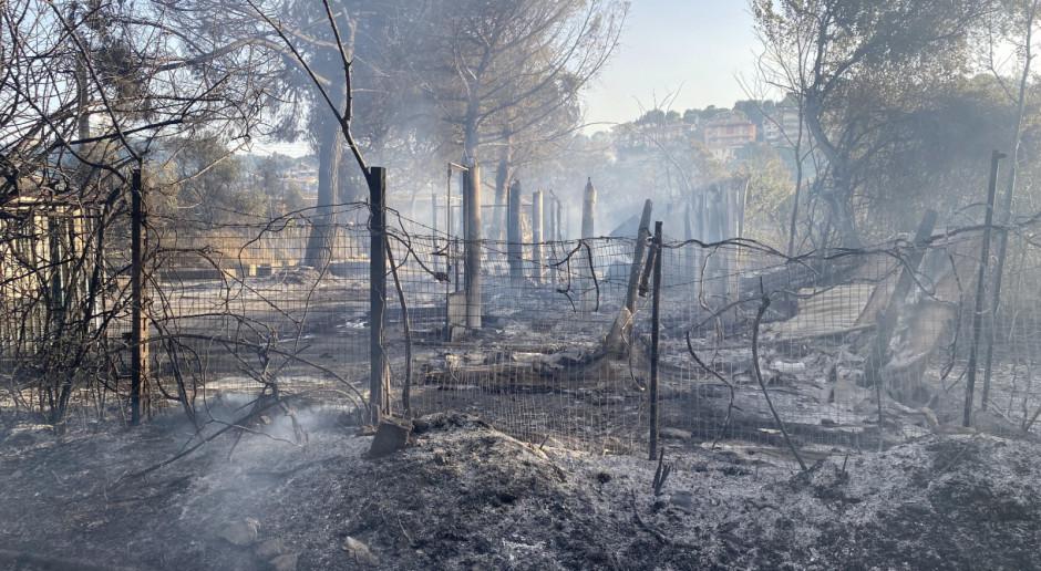 Włochy: Gigantyczne pożary w Abruzji, region prosi o pomoc