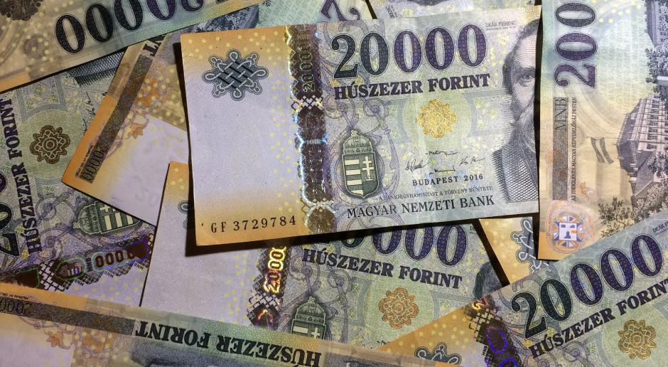 Euro nie tak szybko na Węgrzech. Oto powody