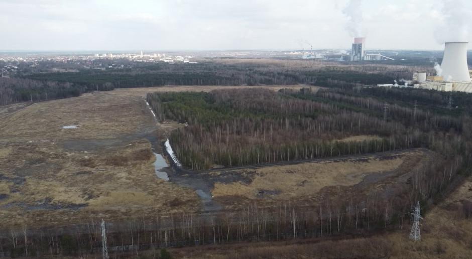 Narasta spór wokół lasu, który ma być wycięty pod fabrykę Izery