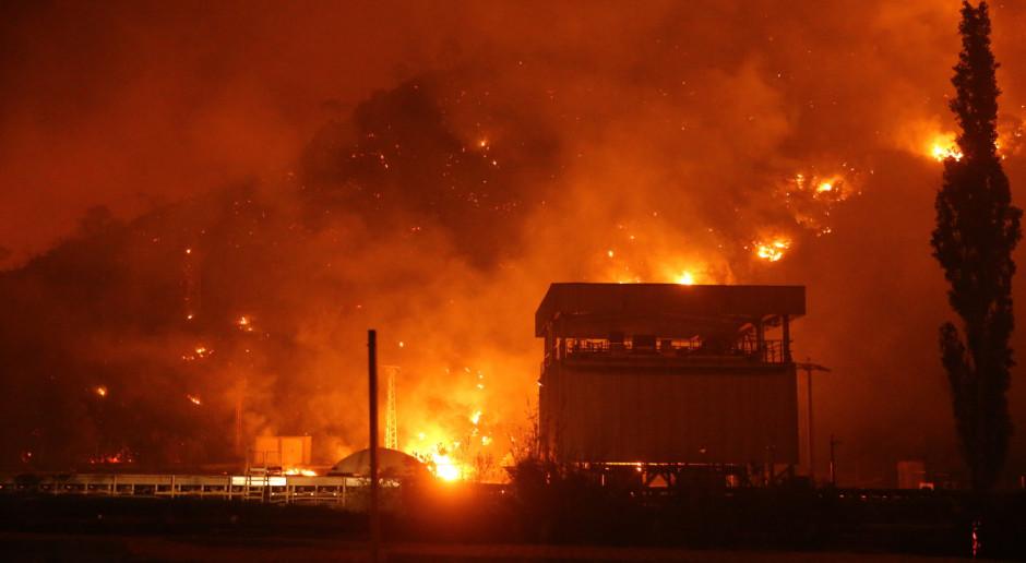 Elektrownia w Turcji zagrożona ogniem. Polski rzecznik przedsiębiorców apeluje o pomoc