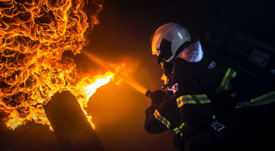 Czescy strażacy wyjechali do Grecji pomagać w gaszeniu pożarów