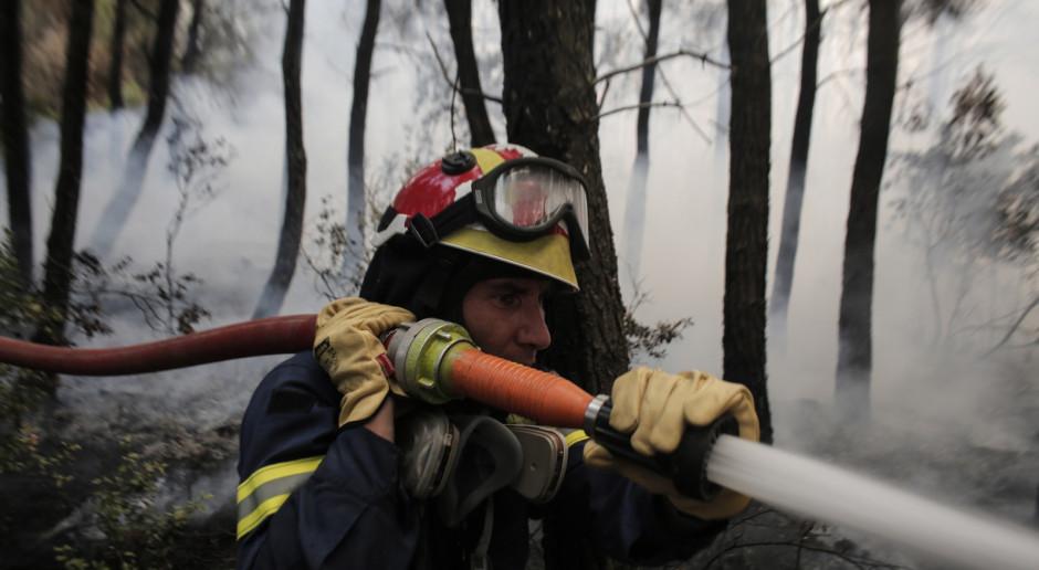 Hiszpania: Strażacy walczą z ponad 40 pożarami. Spłonęło kilka tysięcy hektarów lasu