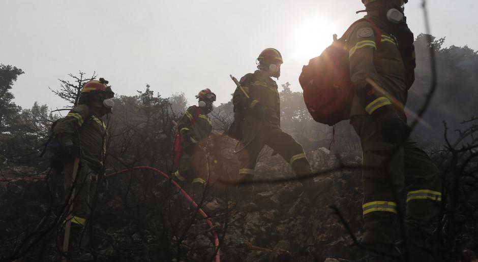 USA: Kalifornijczycy wzywani do pozostawania w domach. Dym z ogromnych pożarów zagraża życiu