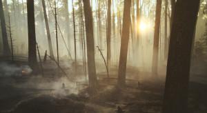 Rosja: Ewakuacja wiosek na Syberii z powodu pożarów lasów