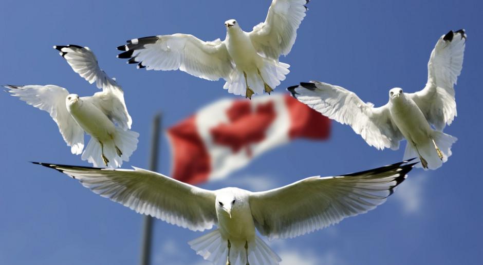 Kanada zaczyna wpuszczać turystów. Po półtora roku