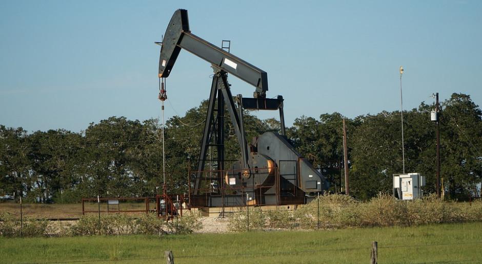 Ceny ropy odbijają się z najniższego poziomu od trzech tygodni