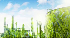 Niemcy chcą wspierać zieloną transformację energetyczną Ukrainy