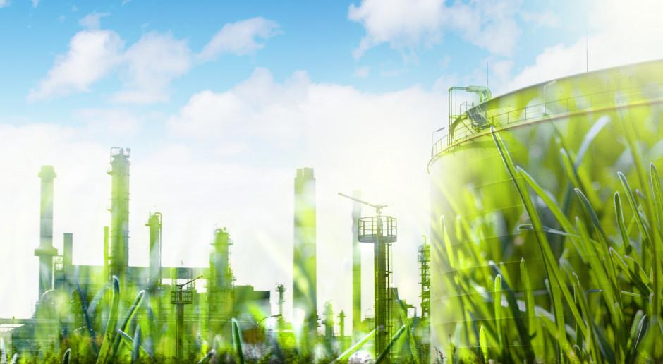Minister energetyki Niemiec: chcemy wspierać zieloną transformację energetyczną Ukrainy