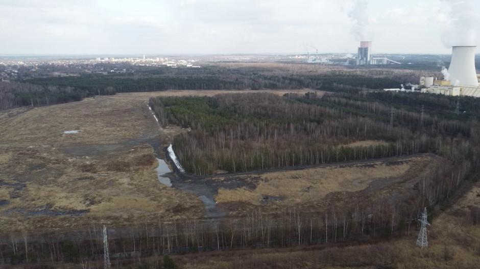 To pogórnicza hałda - mówi prezydent Jaworzna. To las - odpowiadają ekolodzy. Spór trwa. Fot. Materiały prasowe