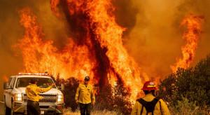 Trwa walka z pożarami w Kalifornii - zagrożony kurort turystyczny