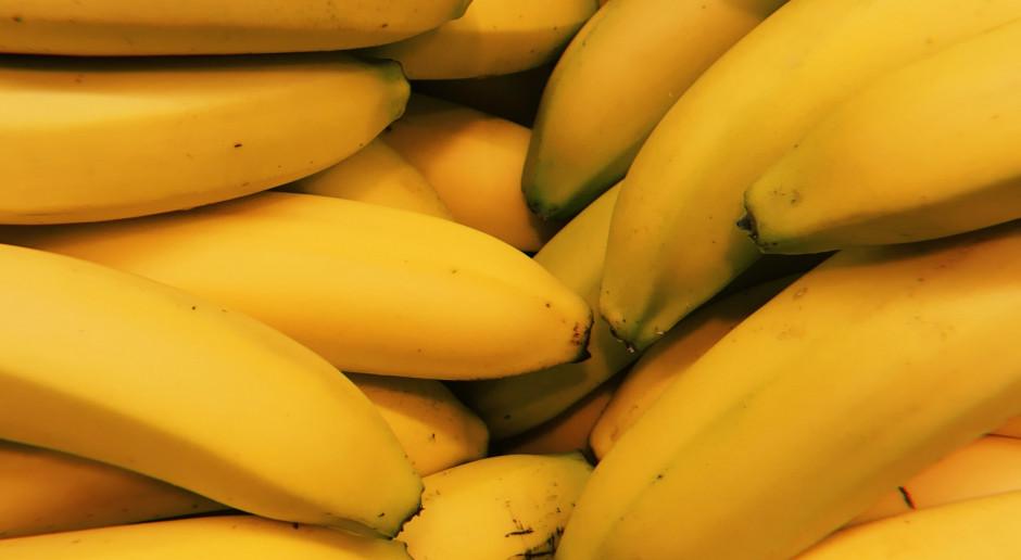 Czarnogóra: Policja przejęła ponad tonę kokainy ukrytą w transporcie bananów