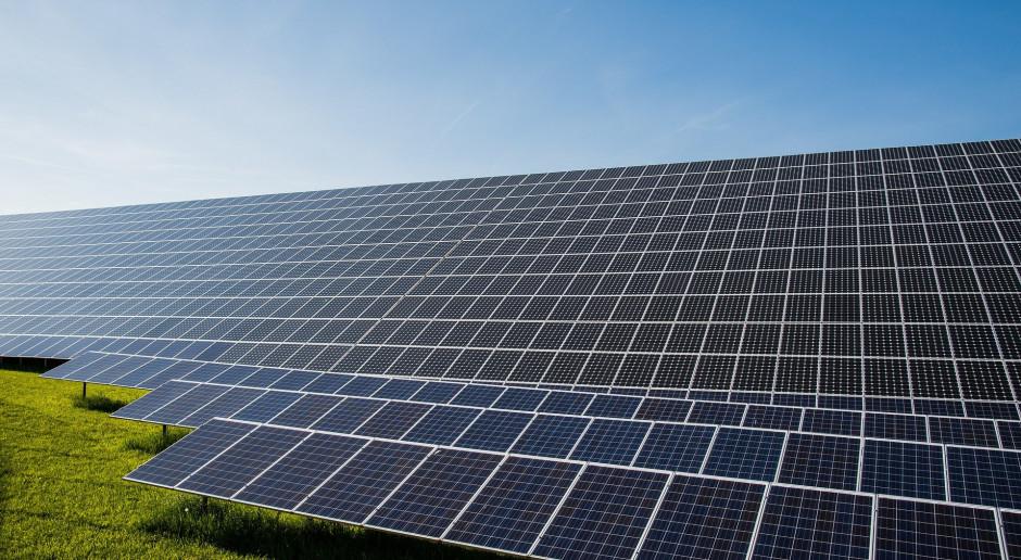 Goldman Sachs: Koszty zmienne OZE nie zbiją cen prądu do zera