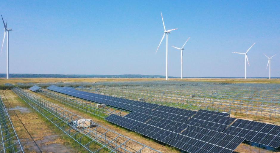 Energa wkracza w decydującą fazę budowy farmy Gryf