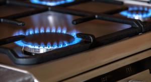Gospodarstwa domowe zużyły więcej gazu i prądu