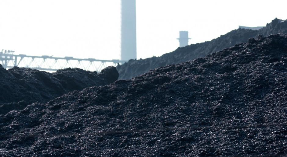Najnowsze notowania metali bazowych, węgla i paliw