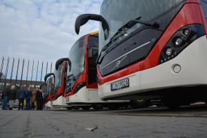 Oto hity polskiej elektromobilności. Cała Europa kupuje od Polski