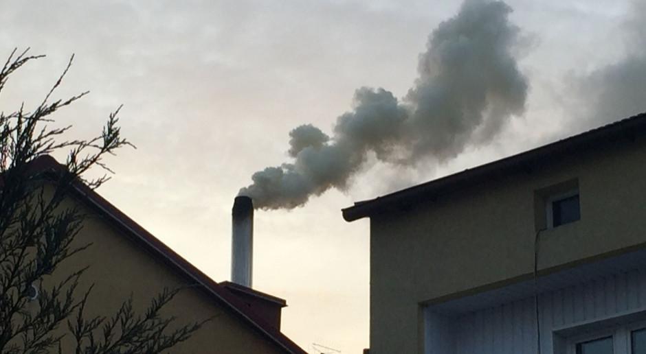 WHO opublikowała nowe rekomendacje dot. jakości powietrza