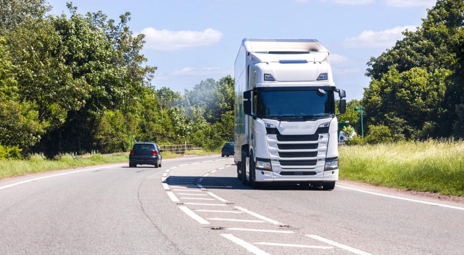Brytyjscy detaliści apelują: brak kierowców może sparaliżować Święta