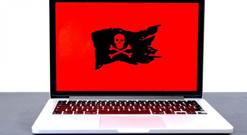 Holandia: Oprogramowanie ransomware staje się coraz większym zagrożeniem dla firm