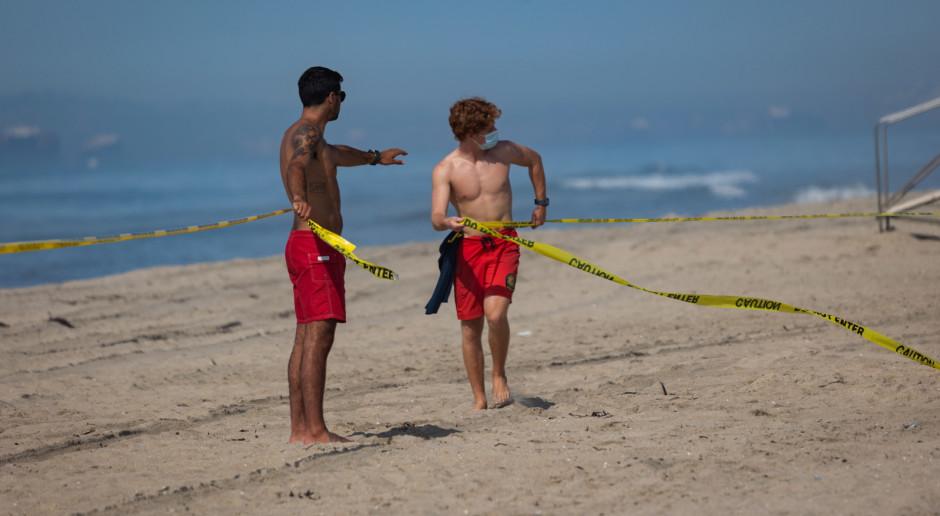 USA: Długa na 10 km plama ropy, martwe ptaki i ryby po wycieku u wybrzeży Kalifornii
