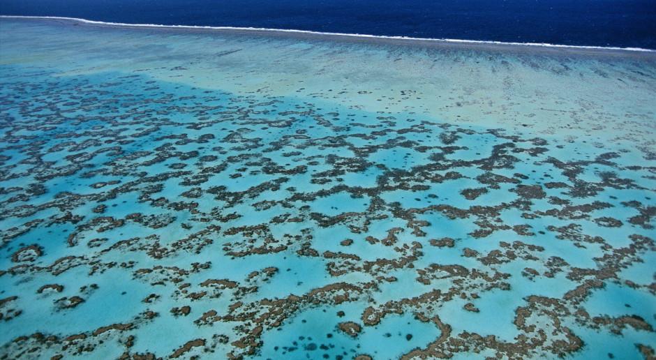 Australijczycy chcą chronić Wielką Rafę Koralową sztucznymi chmurami