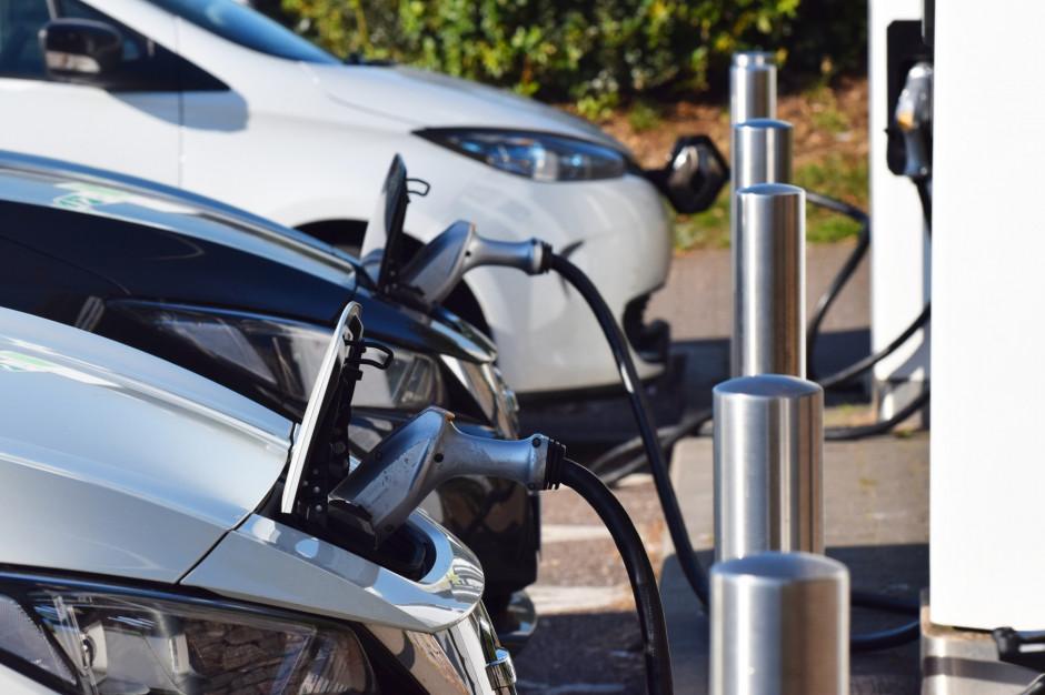 Sprawdzą ślad węglowy nawet wycieraczki samochodowej. Polski biznes musi to wiedzieć
