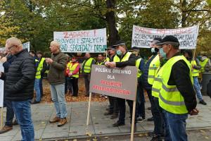 Zaopatrzenie i ceny drewna. Czy Lasy Państwowe nie dbają o polskie firmy?