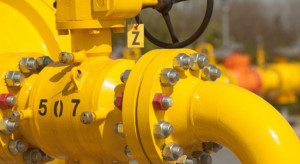 Zdesperowane samorządy nie odpuszczą w sprawie cen gazu. Protest przybiera na sile
